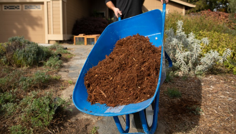 photo of wheelbarrow with mulch