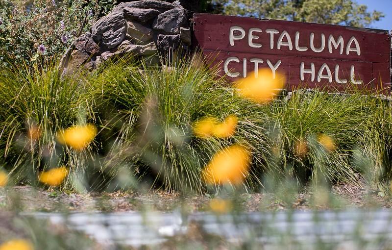photo of Petaluma city hall