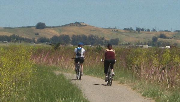 biking in park image