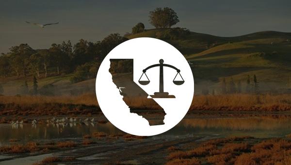 california law icon