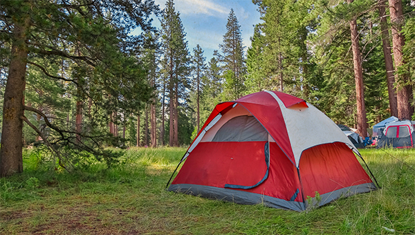 photo of camping tent
