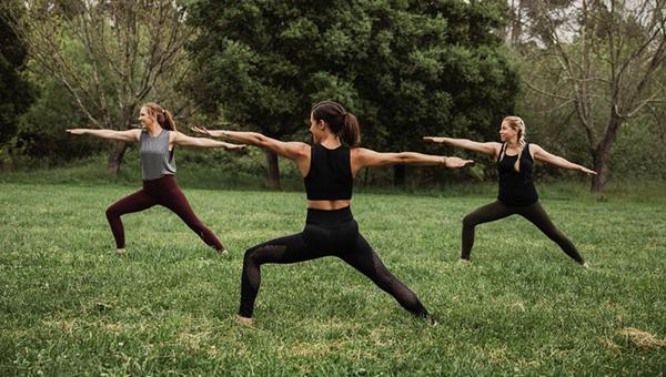picture of petaluma park yoga