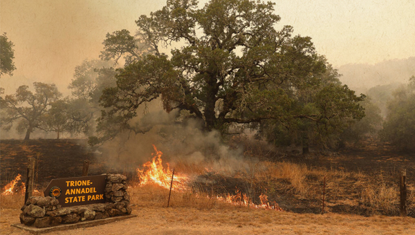 press democrat image from recent wildfire