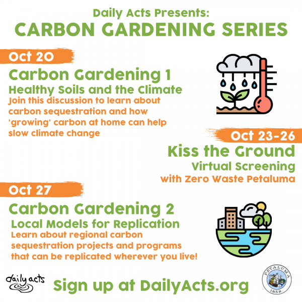 carbon gardening graphic from daily acts