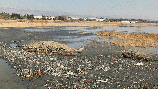 picture from after river dredging