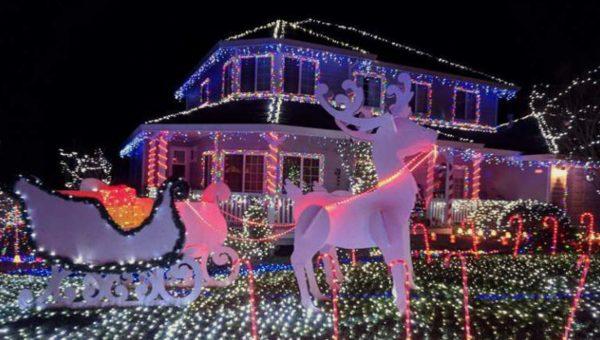holiday lights image