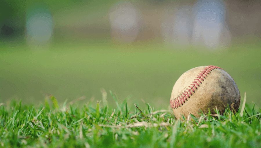 Petaluma Community Sports Fields Baseball Diamond