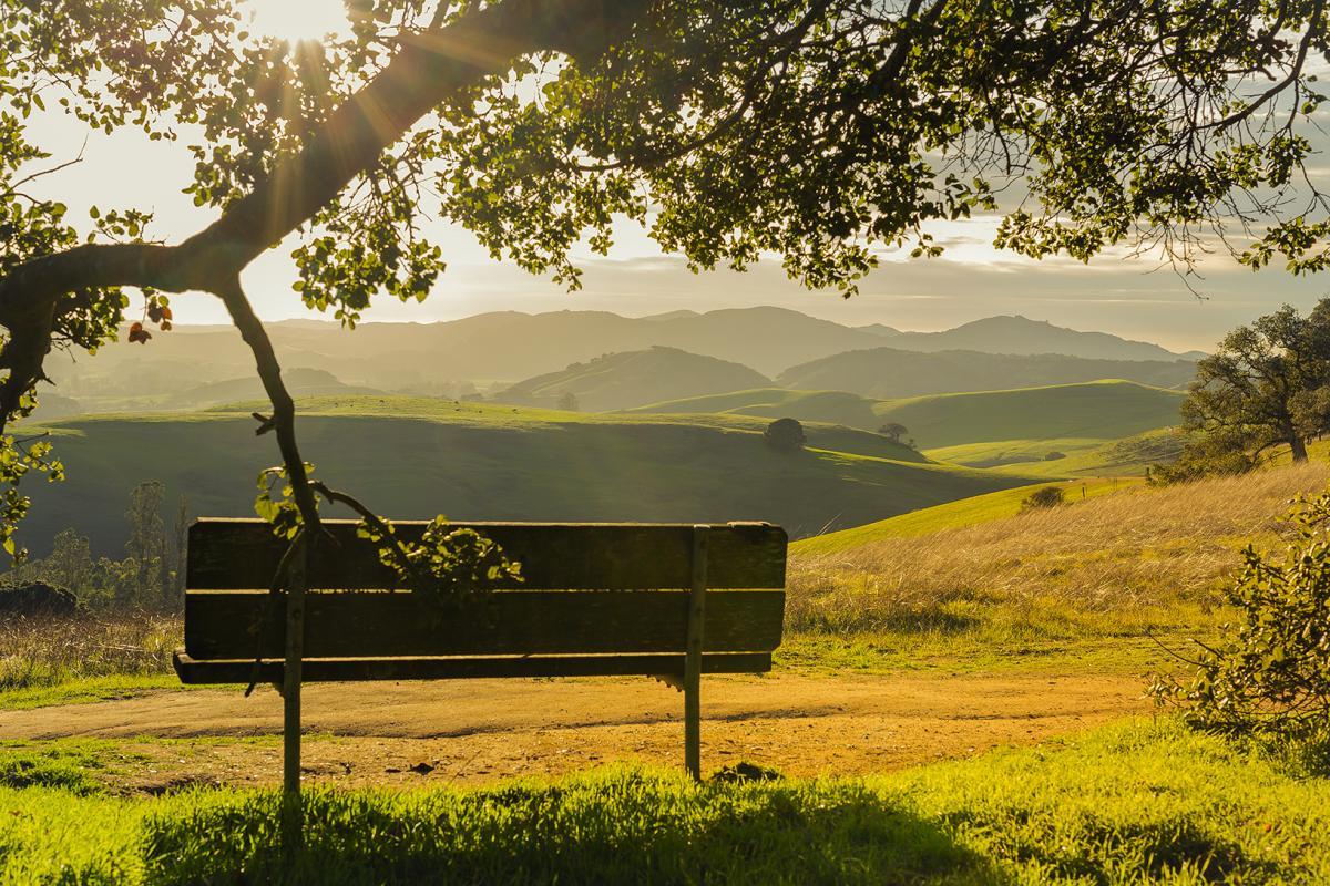 helen putnam bench