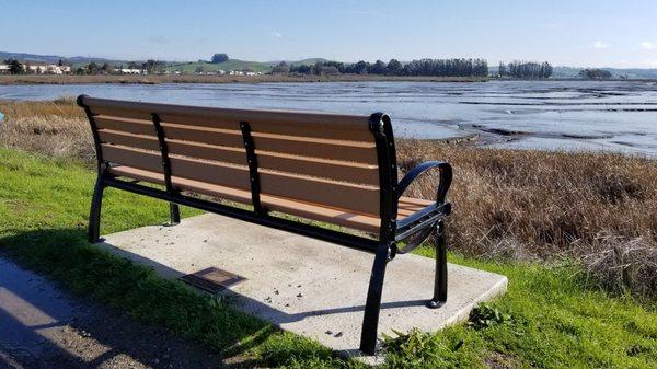 park bench shollenberger