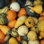 October happenings 9_29