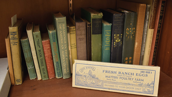image from sonoma library of books