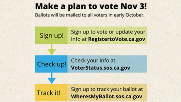 make a plan to vote graphic