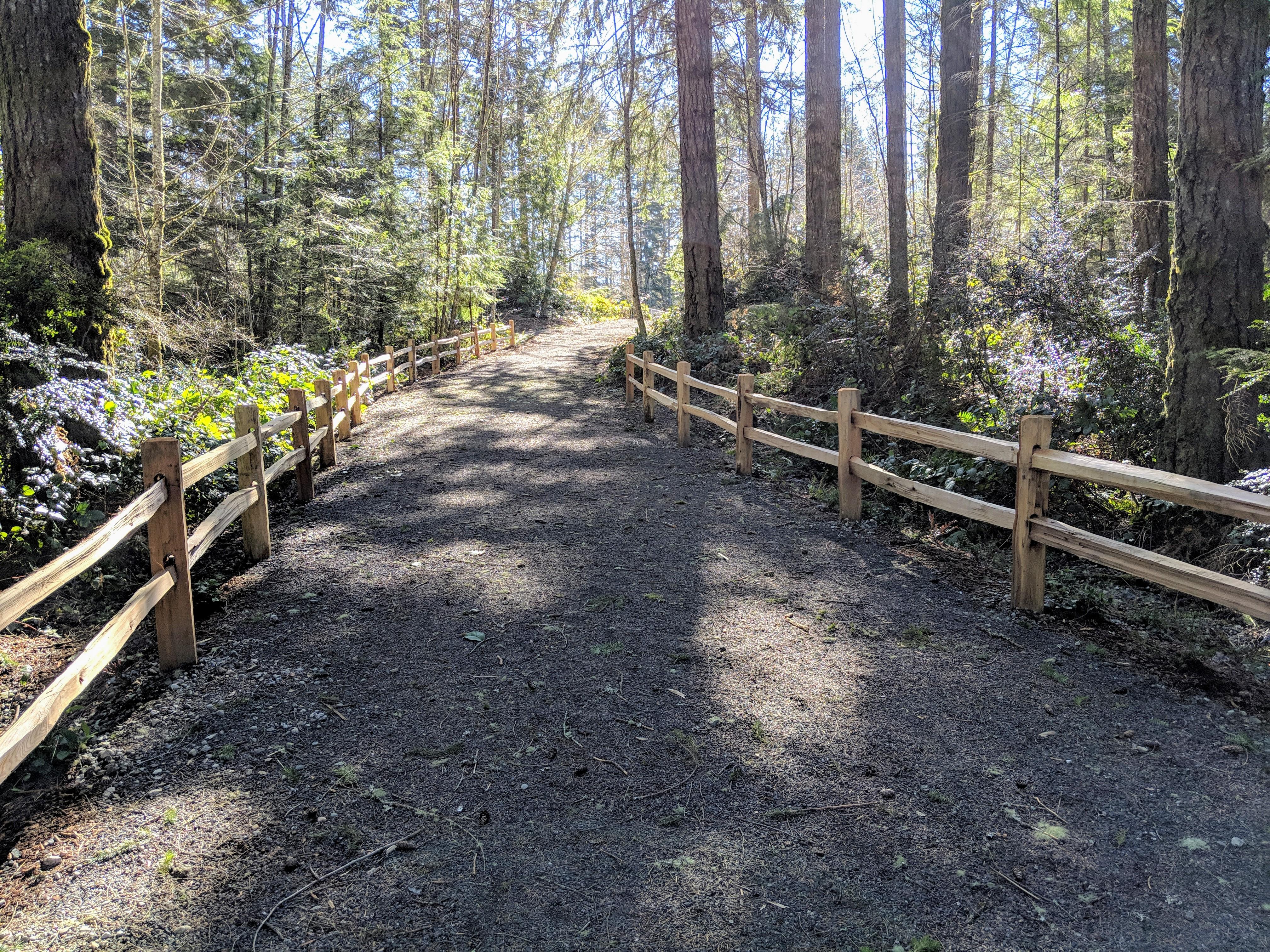 McCormick Village Pathway