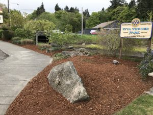 Community Service Day picture - Etta Turner Park