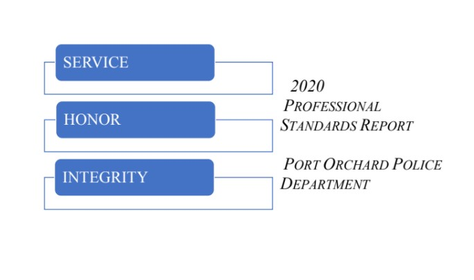 2020 Professional Standards Report