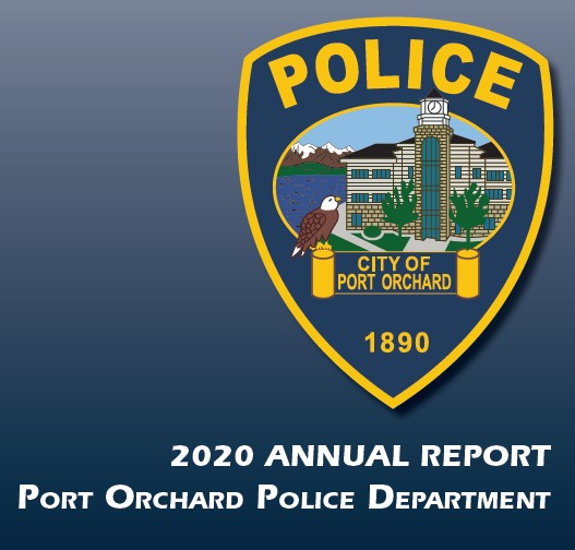 2020 police annual report image