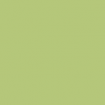 light green Background