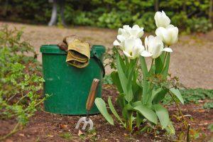 Bucket and Tilips
