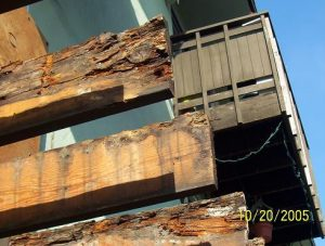 dry_rot_in_deck_joists