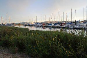 Loch Lomond Marina Boats