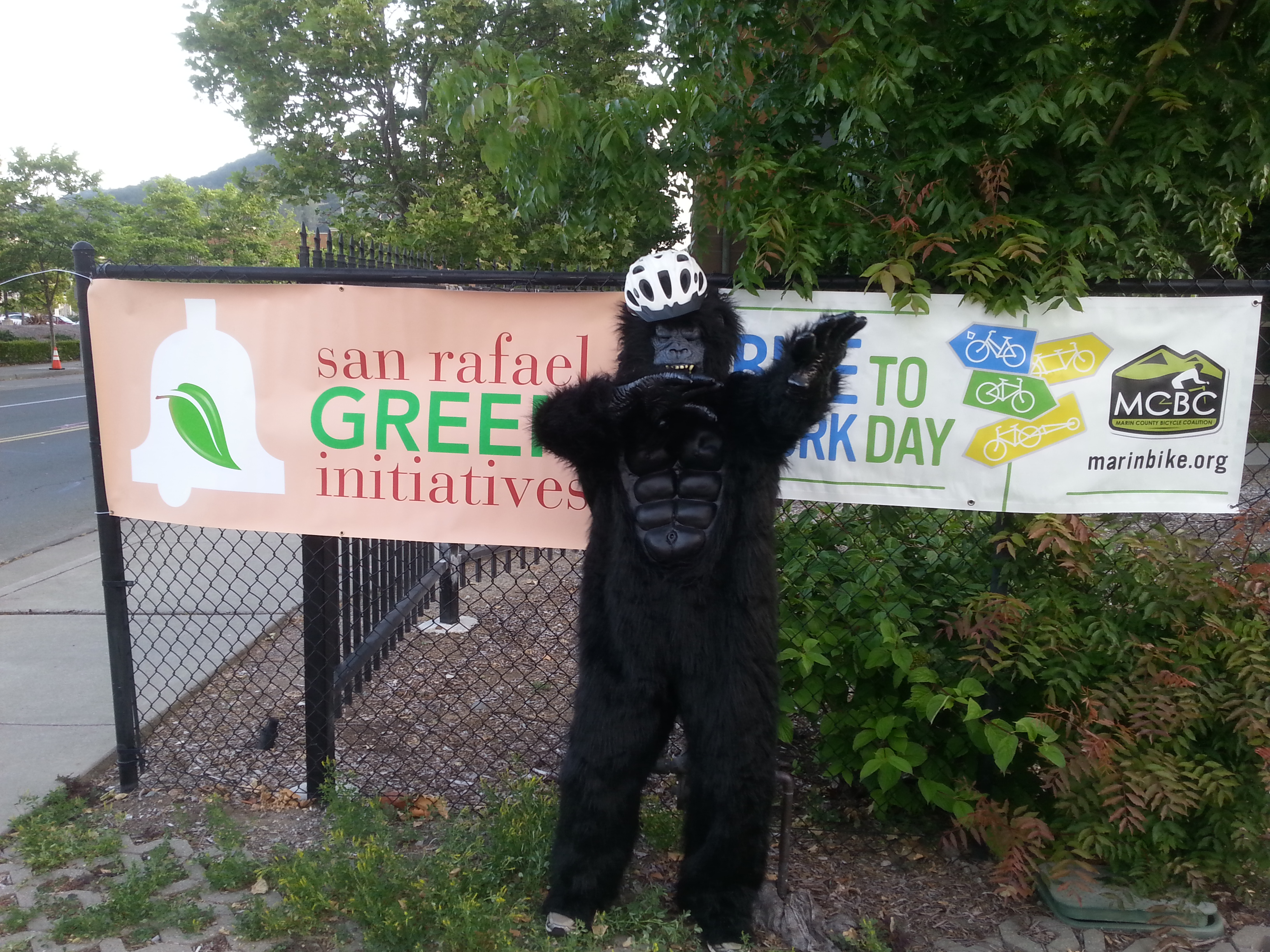 Bike to Work gorilla