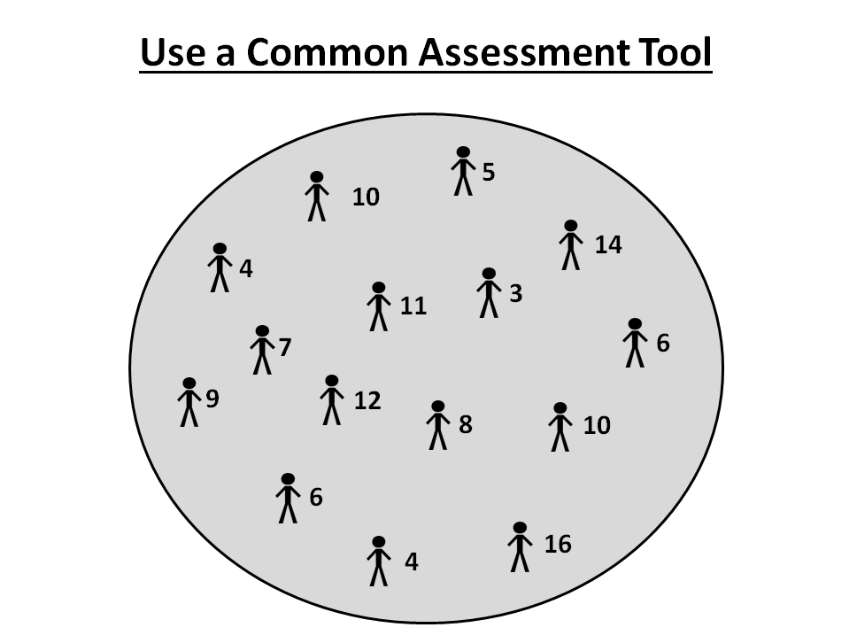 Use a Common Assessment Tool