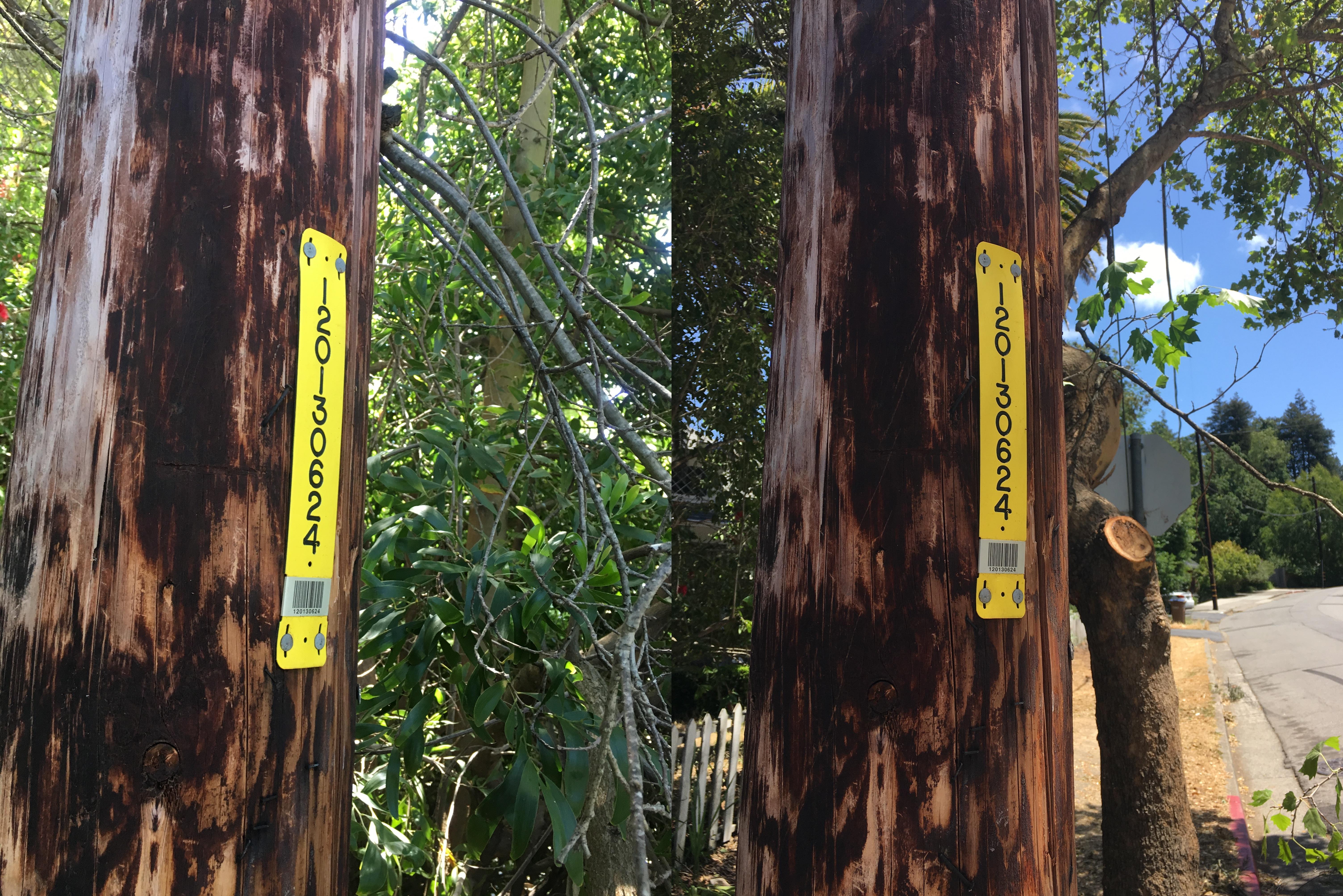 D Street Pole