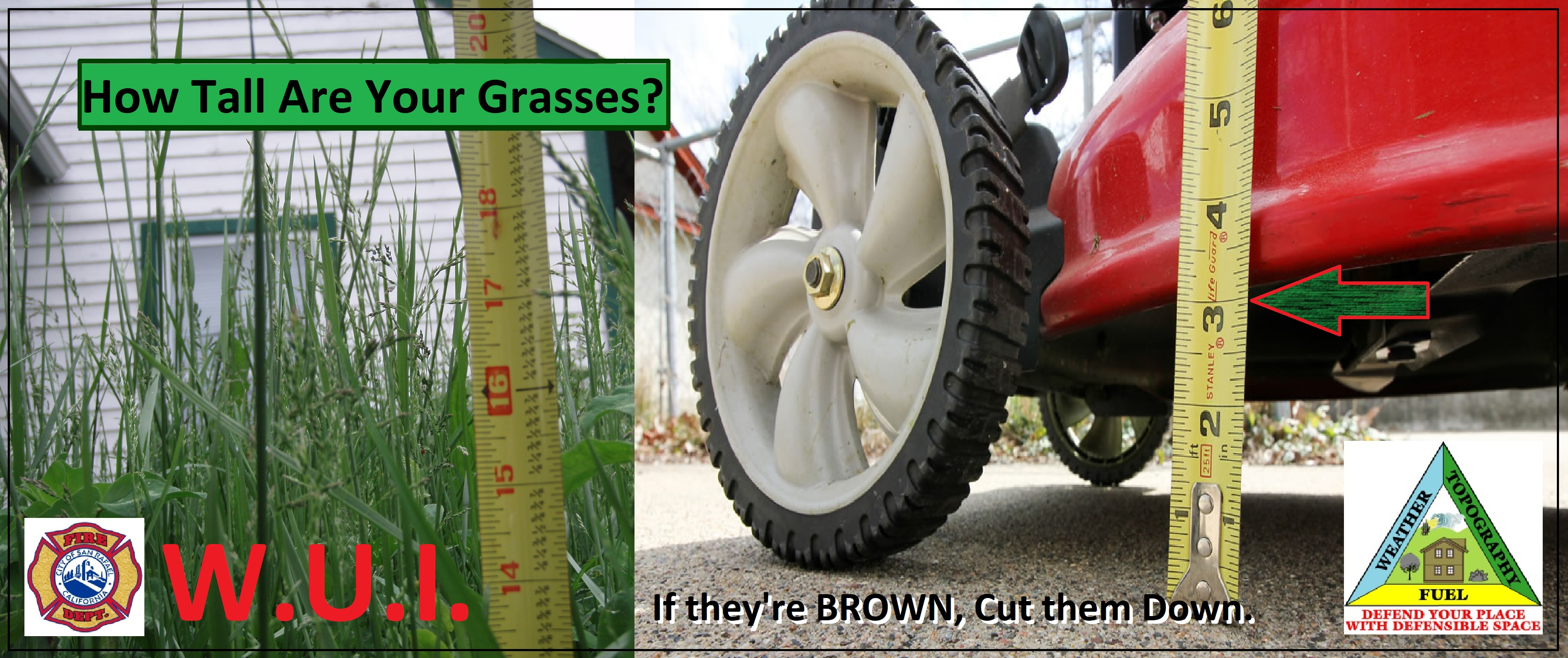 Cut your grass