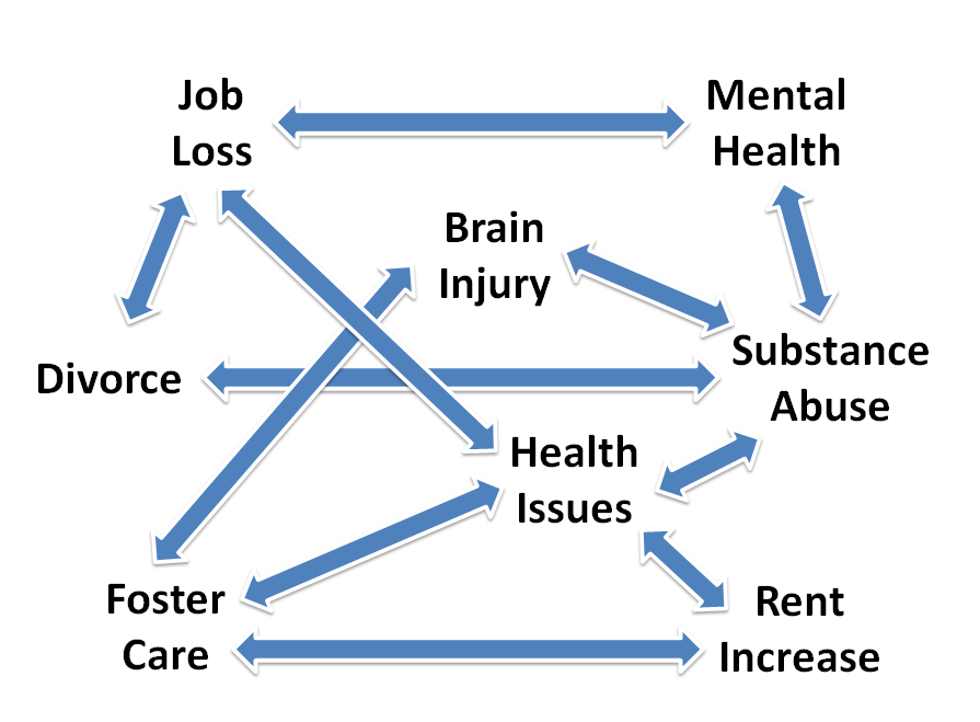 Web of causes for homelessness