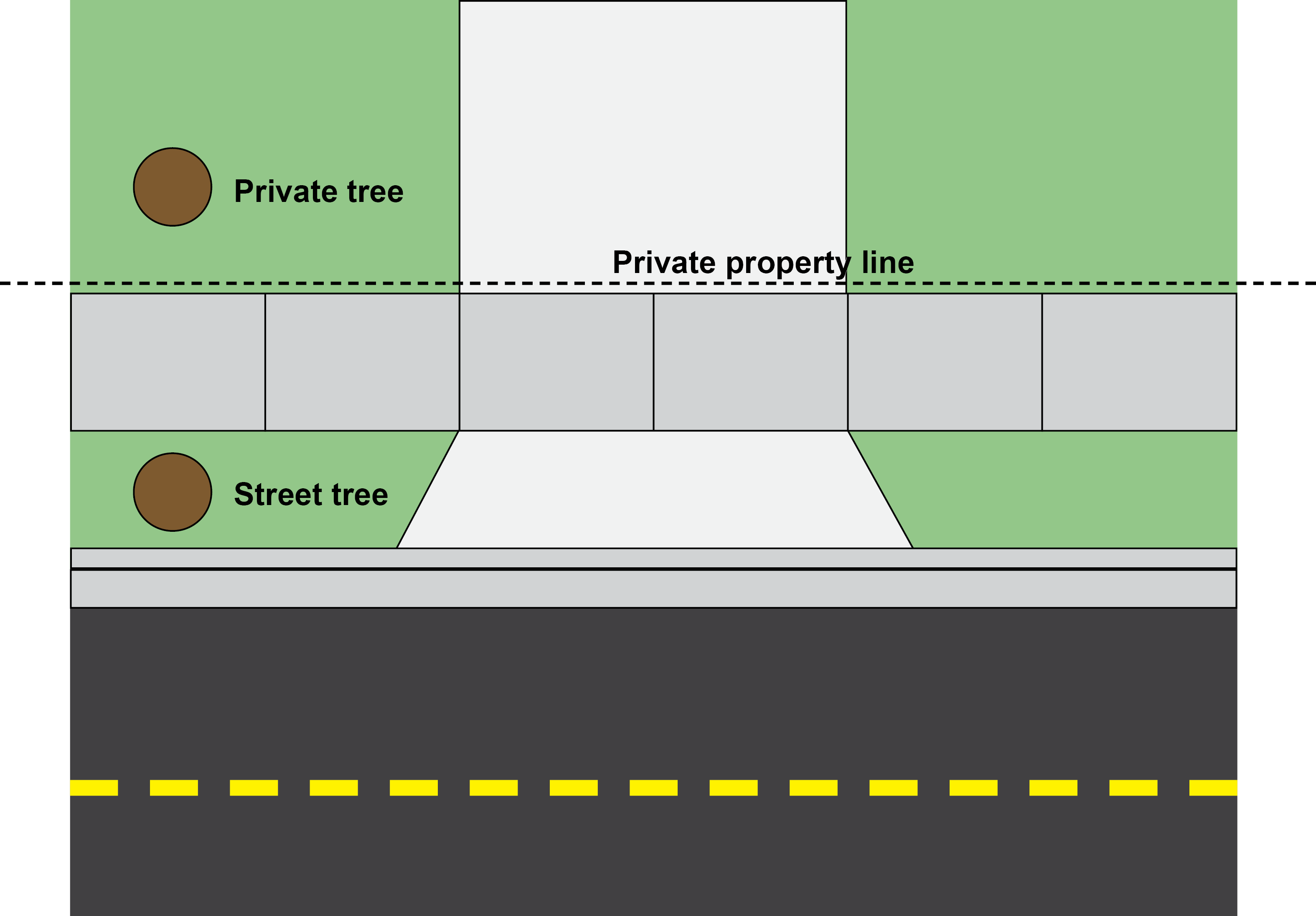 street tree diagram - planting strip