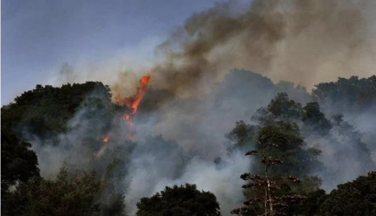 wildfire-protection