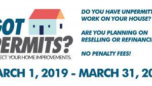 Amnesty Month - March 2019
