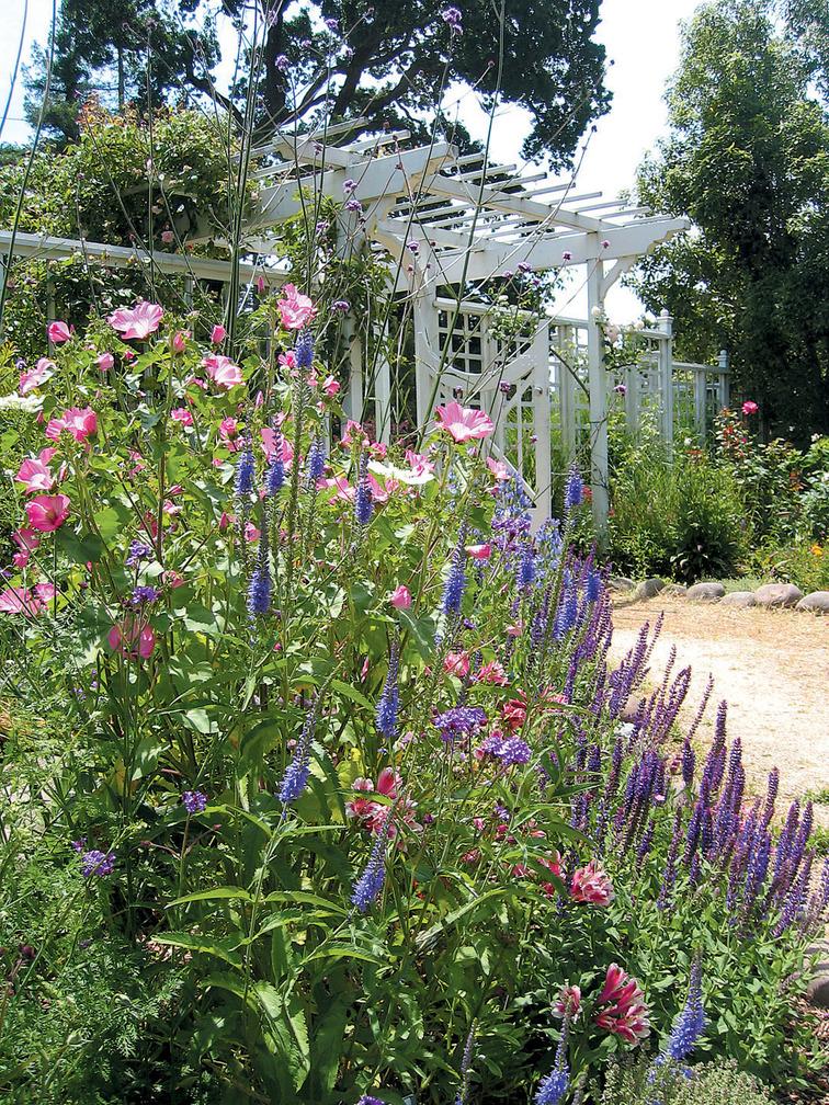 FCC garden