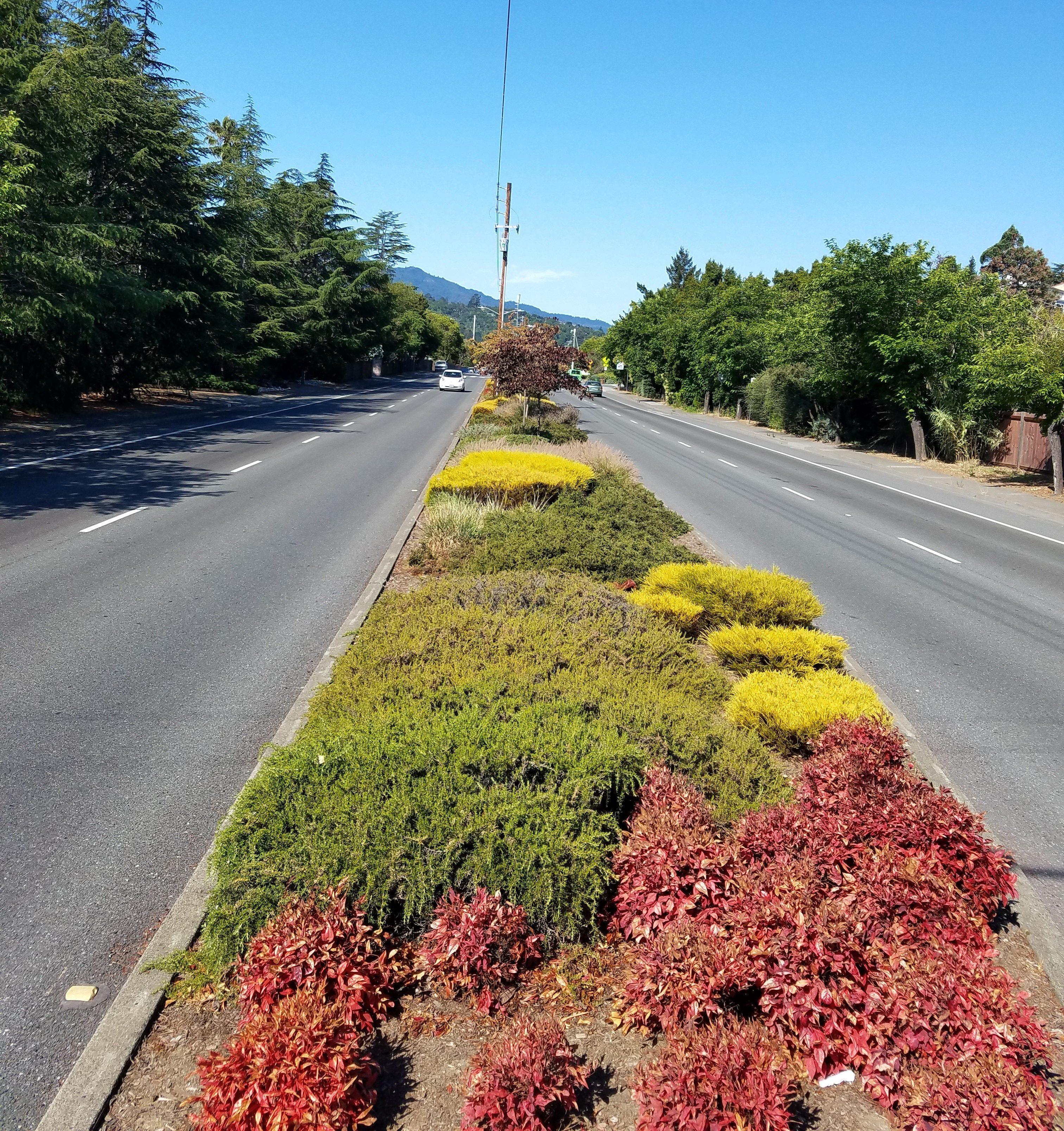 Pt San pedro medians