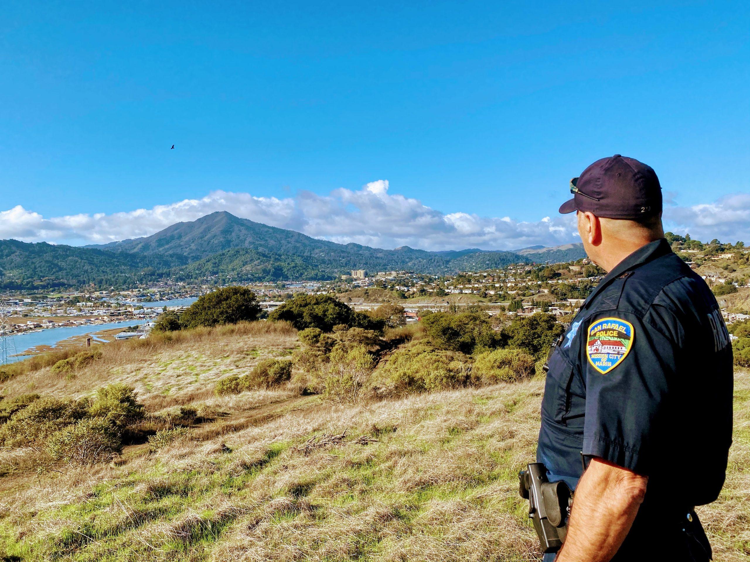 Mount Tam View - Coen