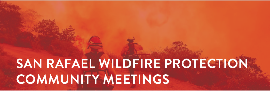 Wildfire Community Mtg