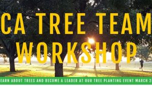 CA Tree Team Workshop