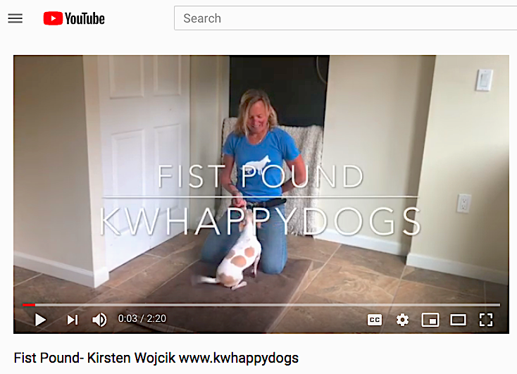 KW Happy Dogs Training Video