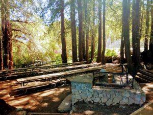 Gerstle Park Picnic Tables
