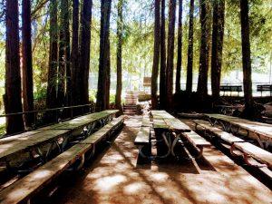Gerstle Park Tables