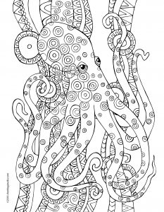 Octopus Coloring
