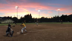 Playing softball at Albert Park Field