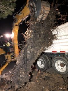 MTF Pkwy and Redwood Hwy street repair 1