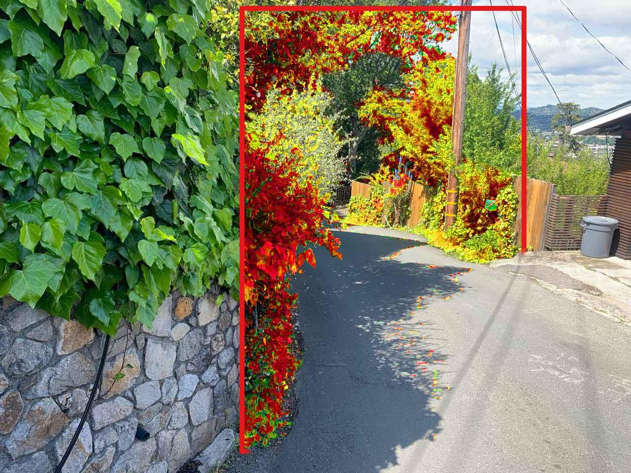 SRFD Before & After Vegetation Removal 3