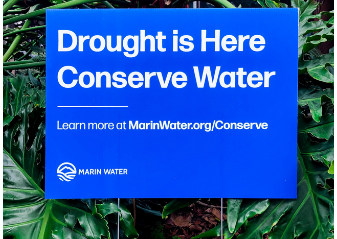 Drought and water restrictions