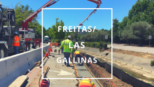 Las Gallinas/Freitas