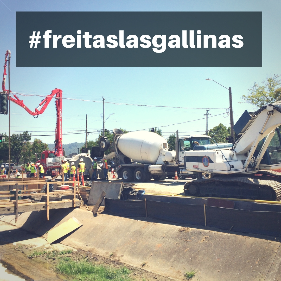 #freitaslasgallinas 08-08-17
