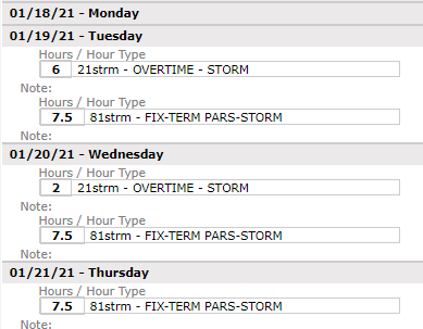 Fixed-term employees timesheets for storms
