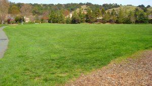 Park Space Rental