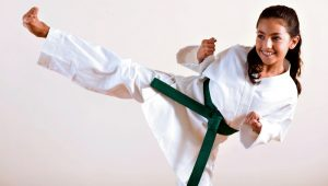 Youth Taekwondo Classes